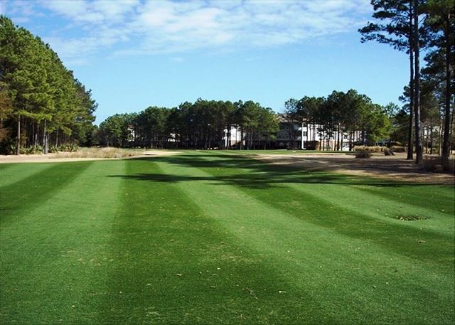 Play golf at any or all of the 4 championship courses in Barefoot Resort