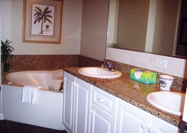 Master Bath with double sinks, granite counter, jetted tub, and separate large glass shower