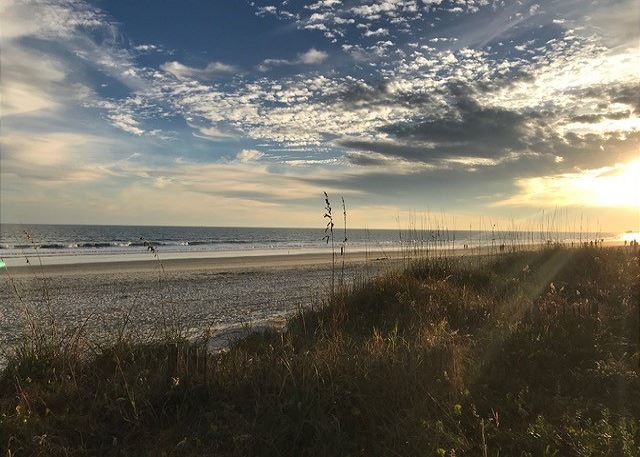 North Myrtle Beach has taken great care to restore our natural dunes and protect the beauty of the Grand Strand.