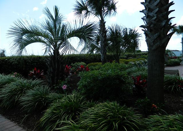 Beautiful and lush tropical landscaped grounds