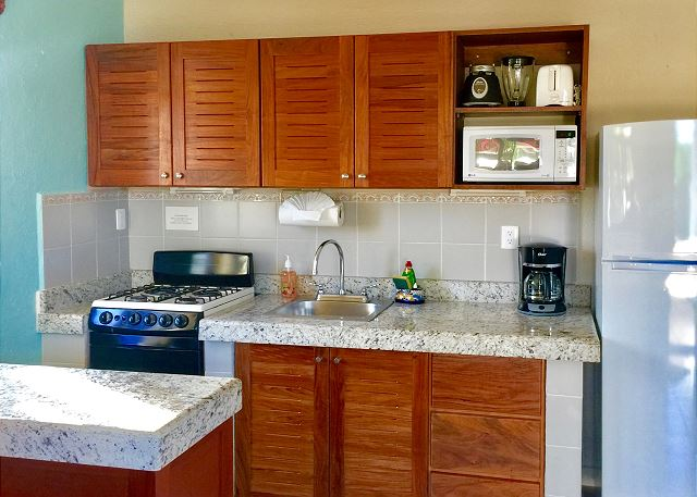 Renovated Kitchen cabinets in units 1, 2 & 3.