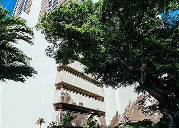 ワイキキ・バニアン (Waikiki Banyan) #3601-T2