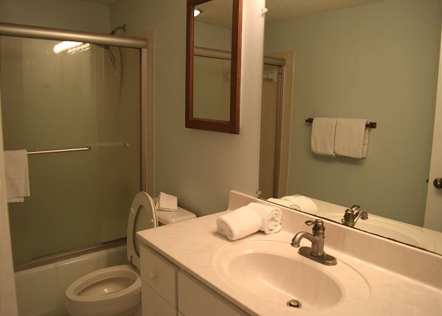 Guest bath with both shower and tub.
