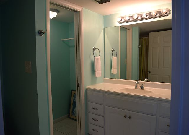 Bath room with an additional closet if you need more space.