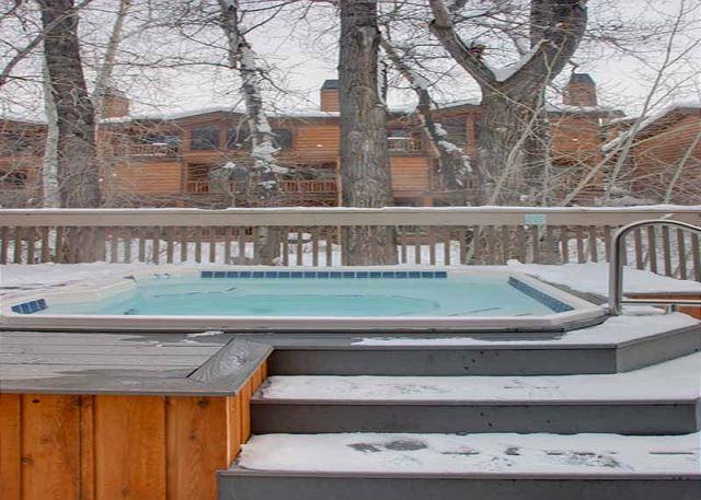 Common Area Hot Tub Winter
