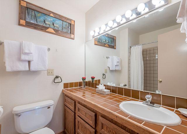Main Level Hall Bathroom