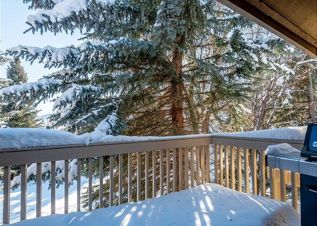 Deck - Winter