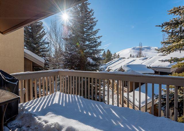Upper Deck Winter