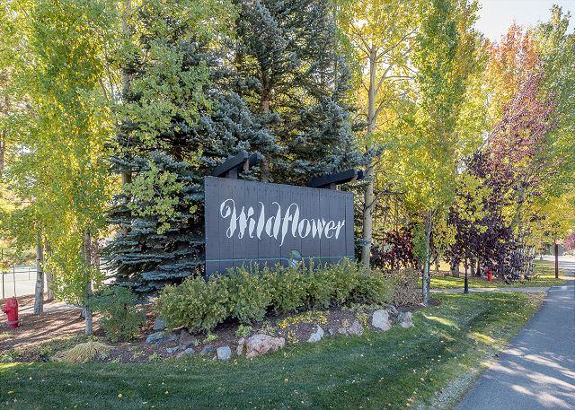 Wildflower Autumn