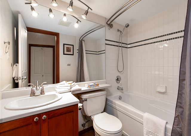 This home has a soaker tub and a hand held shower.