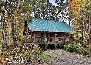 BENEATH THE STARS #220 Semi-Private 2 bedroom pet friendly cabin,6 miles to downtown Pigeon Forge TN