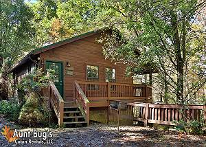 FOUR SEASONS #193 Semi-Secluded 1 bedroom cabin close to Dollywood and the Parkway Pigeon Forge