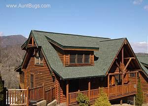 BIG DADDY BEAR - 545 Beautiful 5 Bedroom Log Cabin Rental In Covered Bridge Resort