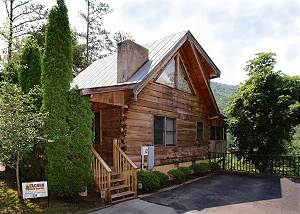 LOVE NEST #334 Gatlinburg Cabin in the mountains Love Nest 334