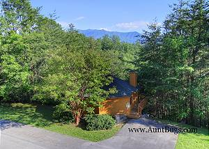 LECONTE LOOKOUT #707 Gatlinburg Cabin in the mountains LECONTE LOOKOUT 707