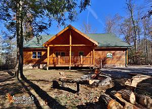 smoky mountain pet friendly cabins in gatlinburg and pigeon forge tn rh acorncabins com