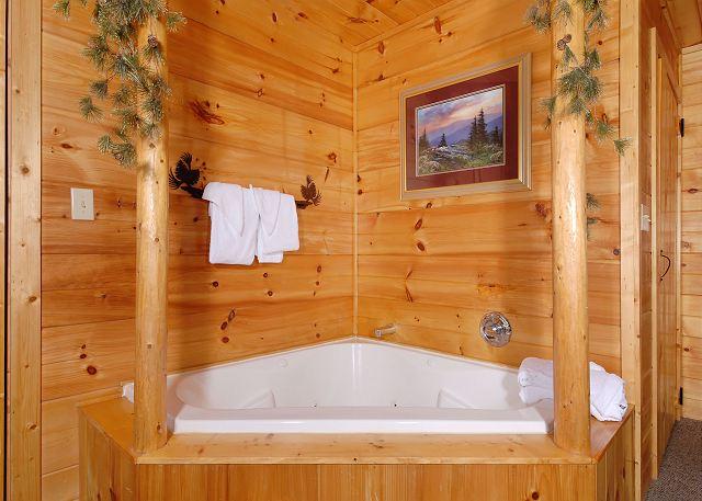 Bearly Mine 1 Bed 2 Bath Cabin Acorn Cabin Rentals