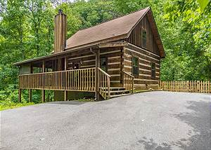 SIMPLY SERENE #201 2 Bedroom 2 Bathroom Pet Friendly Cabin with Fenced in Yard on Bluff Mountain