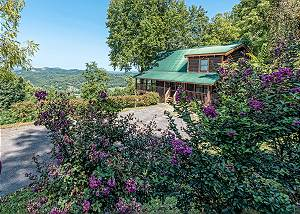 A WILD VIEW YONDER #377 A 3 BR Smoky Mountain Cabin with Great Views, private hot tub, & gameroom!