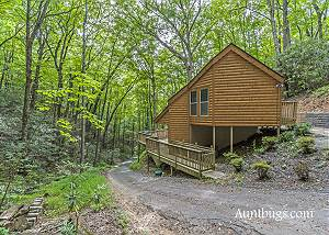 HIDDEN BEAR #134 Cozy Hidden 1 Bedroom Cabin Just 5 Minutes Away from Downtown Gatlinburg