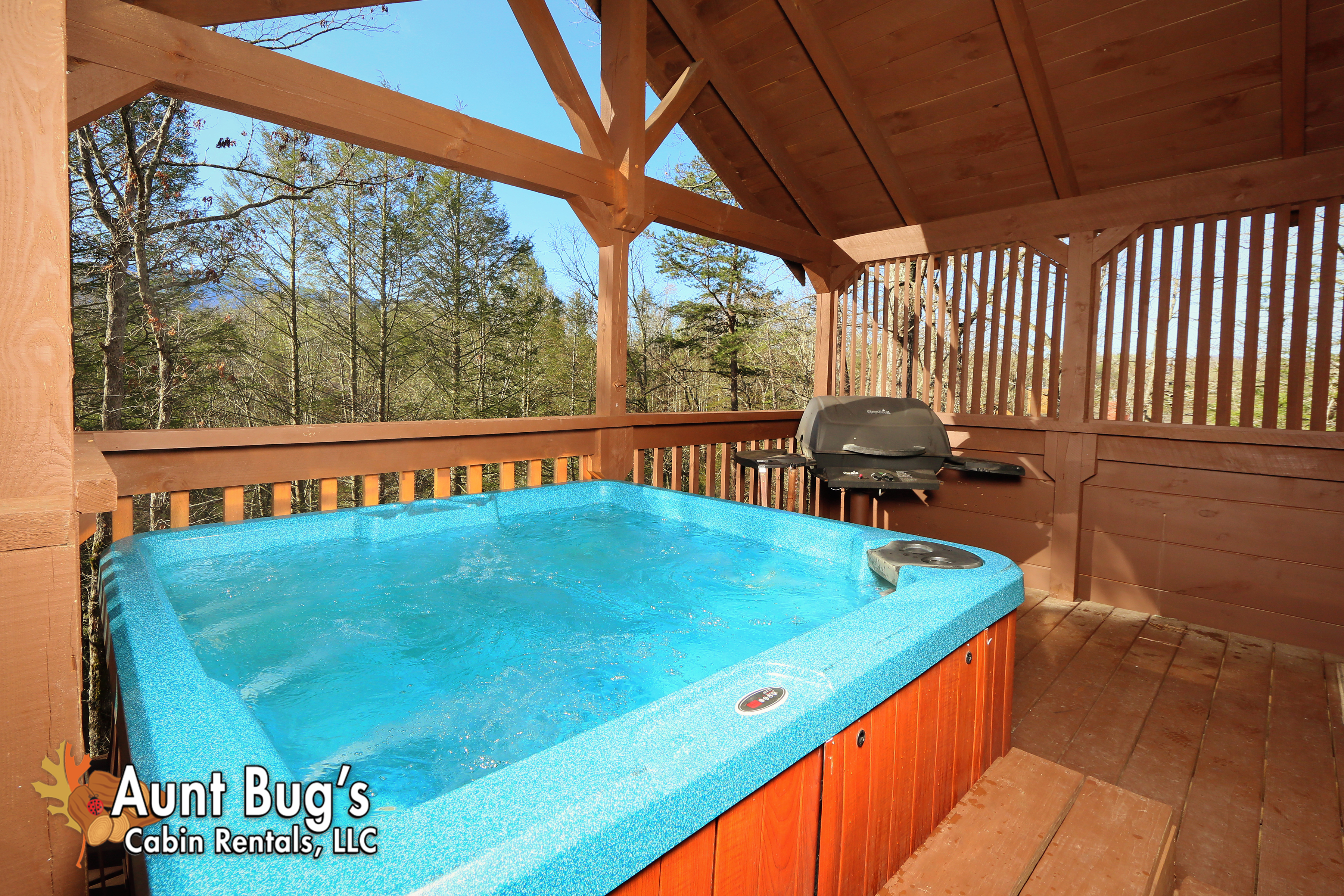 property tennessee pool vacation indoor cosby in around rental cabins redawning with poolin