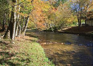 LIVING WATERS #376 Private Log Cabin on River - Trout Stream Spring Special