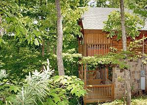 Lazy Bear #101 1 Bedroom 1 Bathroom Wooded and Secluded Log Cabin in a Gated Community