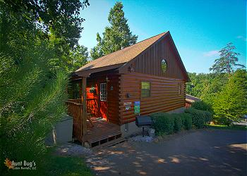 Bear Escape #151 - Sleeps up to4 guests 1 bedrooms