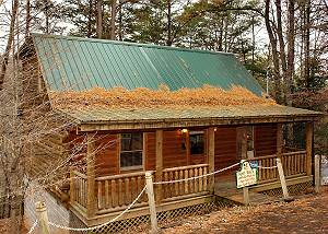 BLACK BEAR RETREAT 211 BEAUTIFUL 2 LEVEL LOG CABIN WITH 3 DECKS BLACK BEAR RETREAT 211