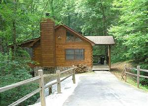 AMERICANA #115 Private 1 Bedroom Smoky Mountain cabin in a wooded setting!