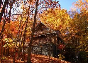 HEAVEN'S EYES #2815 Smoky Mountains Gatlinburg 2 bedroom Cabin Heaven's Eyes 2815