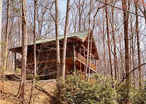 BROWNS BEAR DEN #235 2bedroom Pet Friendly Cabin Gatlinburg TN 5 Minutes to Arts&Crafts Community