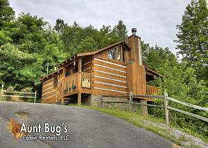 APPLE BEAR VIEW #116 1 Bedroom 1 Bathroom with a Great Mountain View on Bluff Mountain!