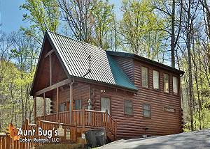ABOVE EXPECTATIONS #294 2 Bedroom Smoky Mountain Cabin Rental with Jacuzzi, Hot Tub and Pool Table