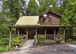 BEAVER FEVER #229 Beaver Fever a lovely log cabin nestled in between Pigeon Forge & Gatlinburg