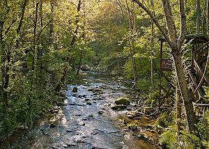 WHISPERING WATERS #208 Large 2 bedroom Creekside Cabin in Pigeon Forge with Pool Table & Seclusion!