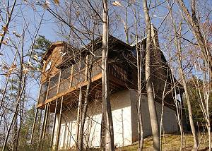 TOP OF THE WORLD #201 2 Bed Pet Friendly Cabin, 6 miles to town Gnatty Branch Village Pigeon Forge