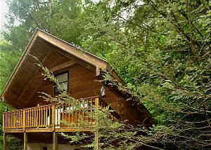WILD THING #1525 1 Bedroom Log Cabin Within Walking Distance to Gatlinburg Community Center