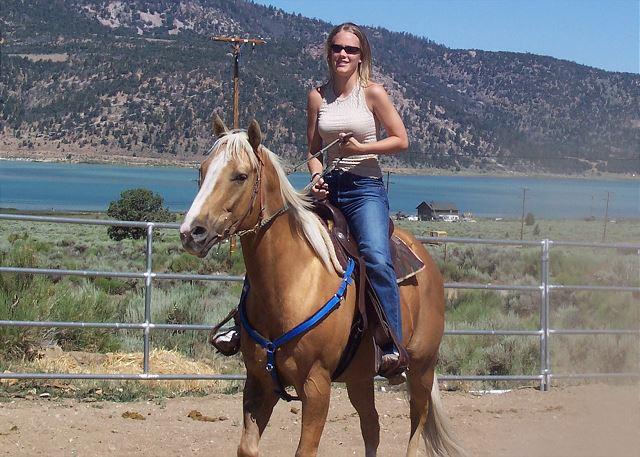 Horse Property!!