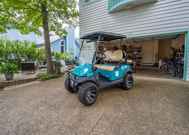 Sanctuary golf cart