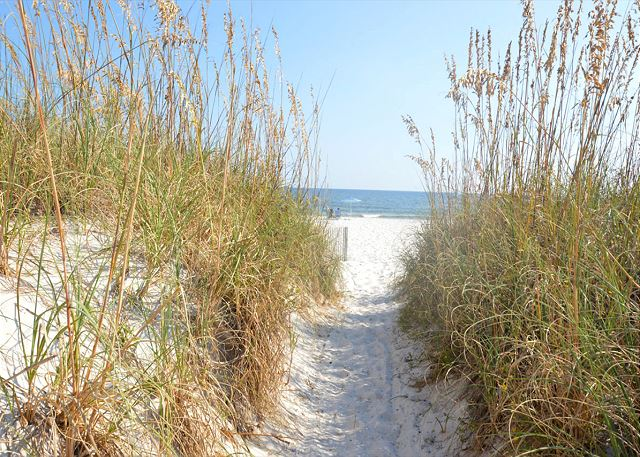 Sea Oats path to beach.