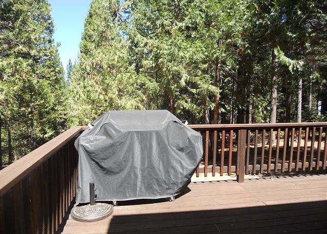 Propane BBQ is available for summer use only. & Arnold CA United States - Grizzlyu0027s Den | Big Trees Vacation Rentals