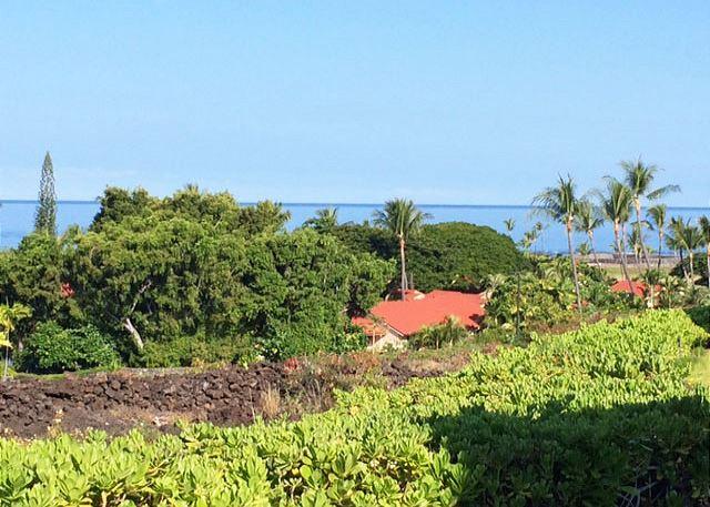Lower Lanai View