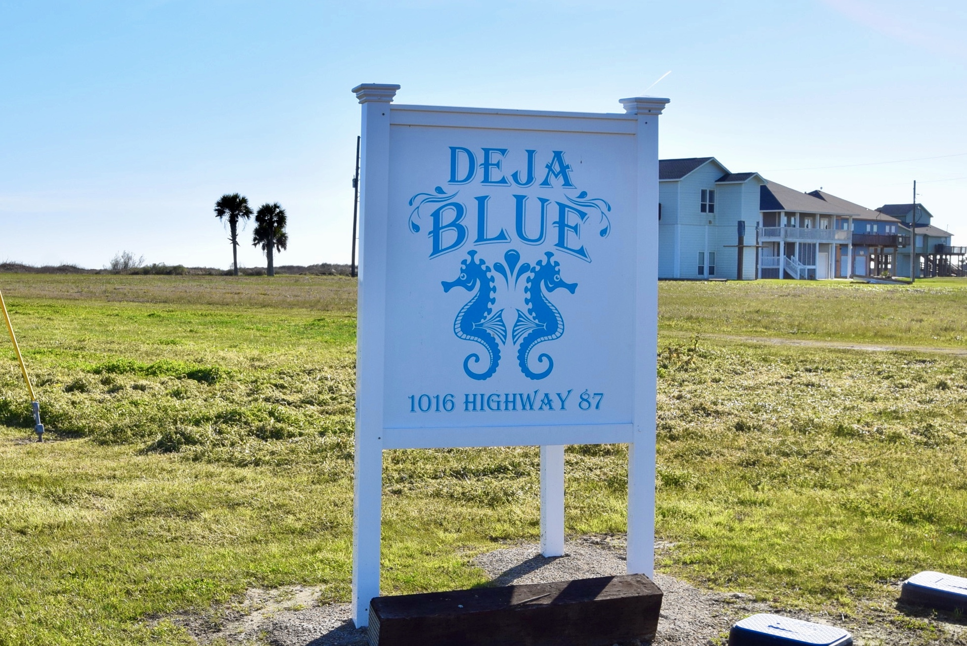 Deja Blue | Photo 72