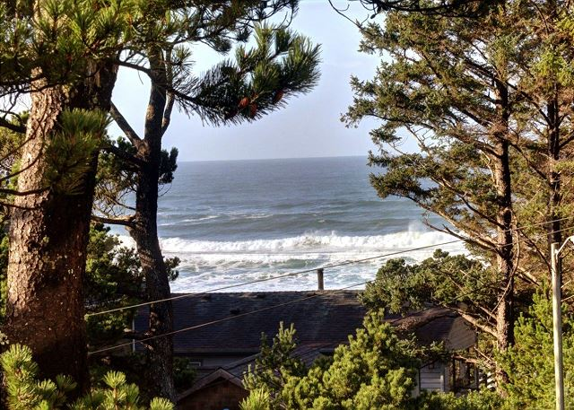 Pacific Vista | Photo 3
