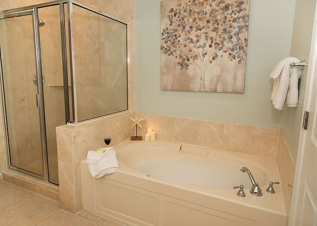 Master Bathroom with Walk in Shower and Two Person Jacuzzi Tub