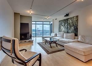 High Rise Condo Downtown-Executive 30 Day Rental