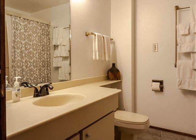 Condo rental in Durango, CO. Studio condo bathroom with shower, toilet, and sink.