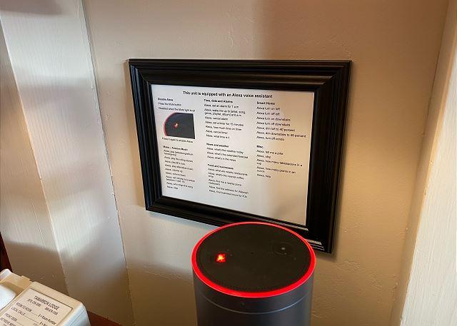 Alexa Voice Assistant