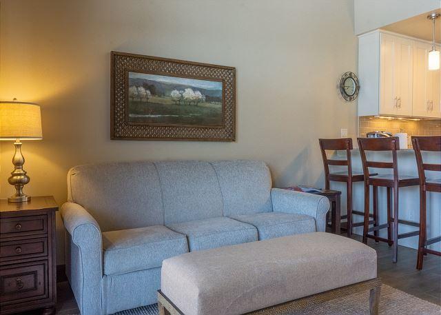 Sleeper Sofa in Living Room Area